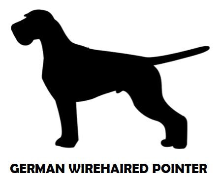 3Silhouette Sample - German Wirehaired P