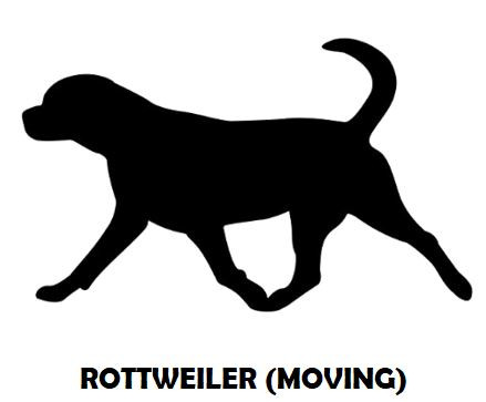 6Silhouette Sample - Rottweiler (Moving)