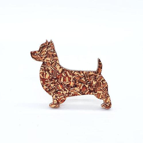 AUSTRALIAN TERRIER - Chunky Copper