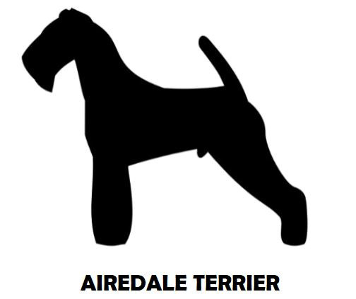2Silhouette Sample - Airedale Terrier.JP