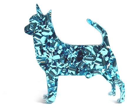 CHIHUAHUA (SMOOTH COAT) - Chunky Baby Blue