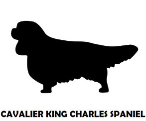 1Silhouette Sample - Cavalier KS Spaniel