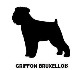 1Silhouette Sample - Griffon Bruxellois.