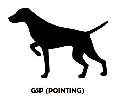 3Silhouette Sample - German Shorthaired