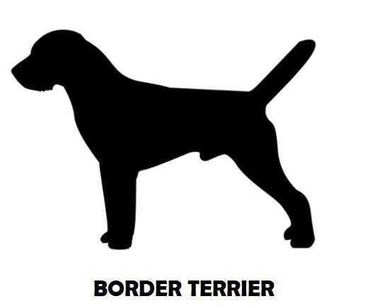 2Silhouette Sample - Border Terrier.JPG