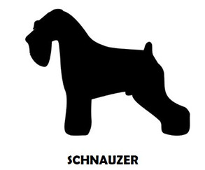 6Silhouette Sample - Schnauzer.JPG