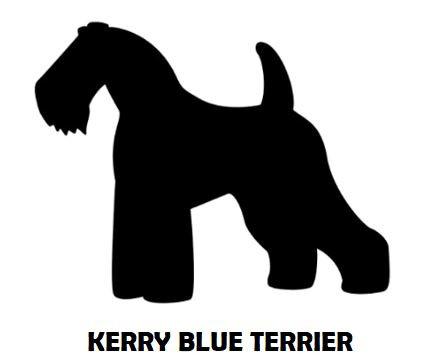 2Silhouette Sample - Kerry Blue Terrier.