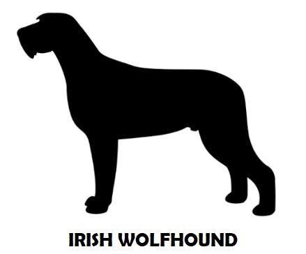 4Silhouette Sample - Irish Wolfhound.JPG