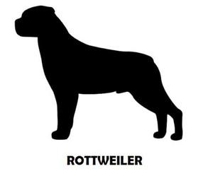 6Silhouette Sample - Rottweiler (Standin