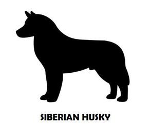 6Silhouette Sample - Siberian Husky.JPG