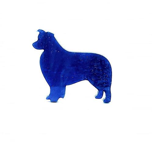 BORDER COLLIE - Shimmer Cyan Blue