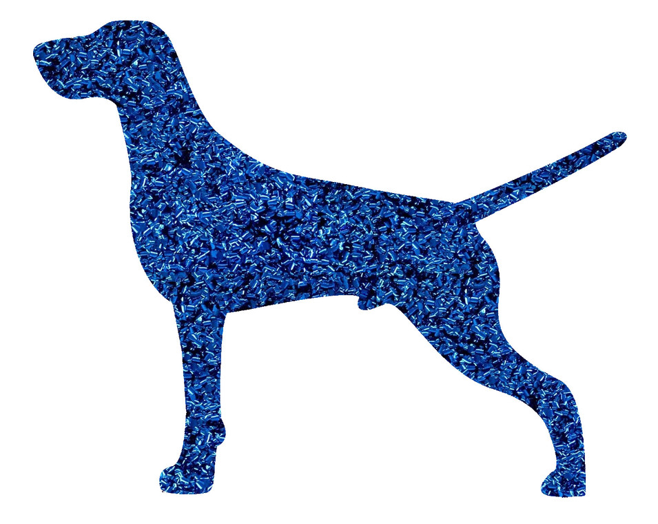 GSP - CH COBALT BLUE.jpg