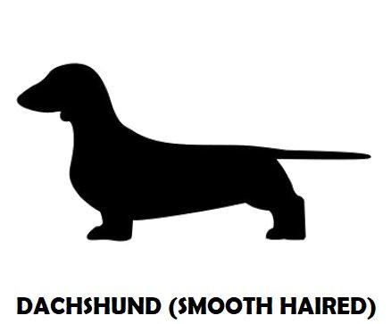 4Silhouette Sample - Dachshund (SH).JPG
