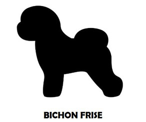 1Silhouette Sample - Bichon Frise.JPG