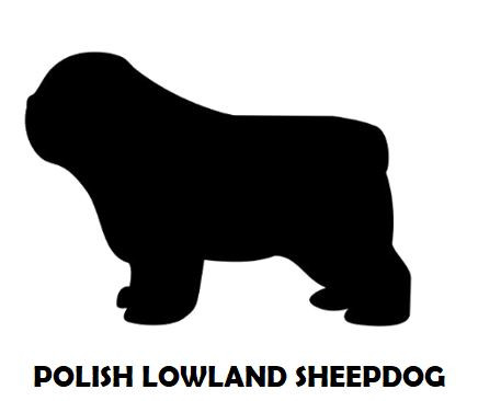 5Silhouette Sample - Polish Lowland Shee