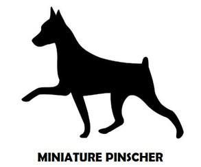 1Silhouette Sample - Min Pin.JPG