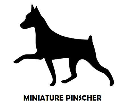 1Silhouette Sample - Min Pin.JPG