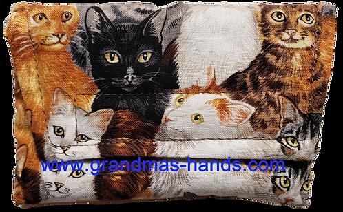 Cute Kittens - Insulin Pump Pouch