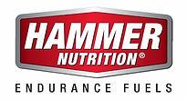 Hammer Logo - Copy (640x344).jpg