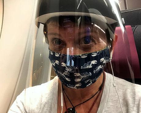 jennifer-morton-masked-flight.jpg