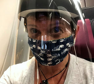 jennifer-morton-masked-flight.jpg