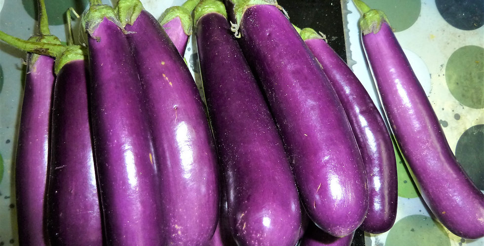 Eggplant - 'Long Purple'