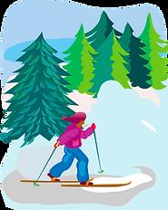 ski de fond.png