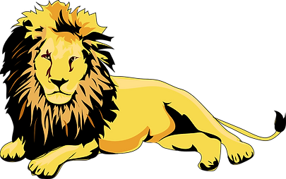 lion-46893_1280.png