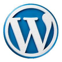 Information for building website on WordPress WYSIWYG platform