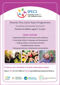 Parents Plus Early Years Programme: A positive and practical course for parents.