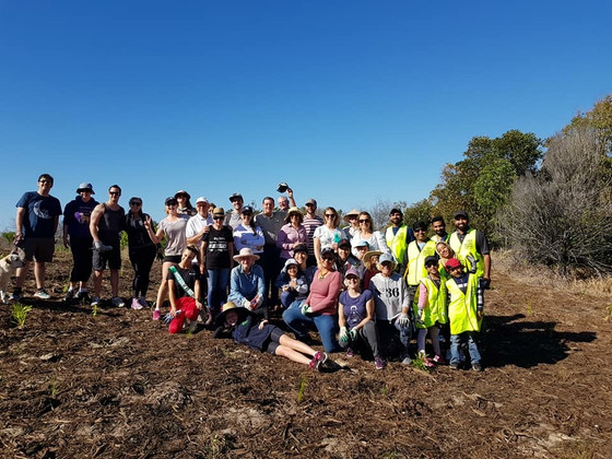 Viridis attends Planet Ark National Tree Day