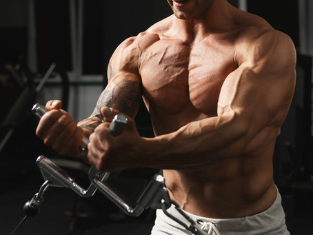 3 Things You Should Focus On to Maximize Muscle Growth