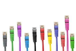 Netværk skaber forbindelser