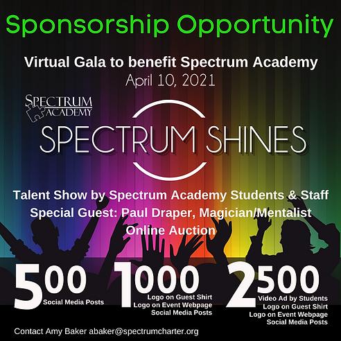 SS Sponsorship (1).png