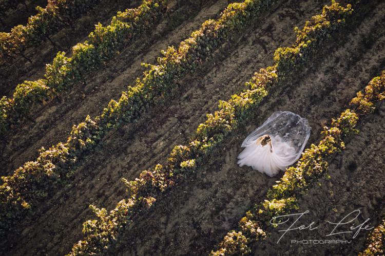noiva vinhas-2.jpg