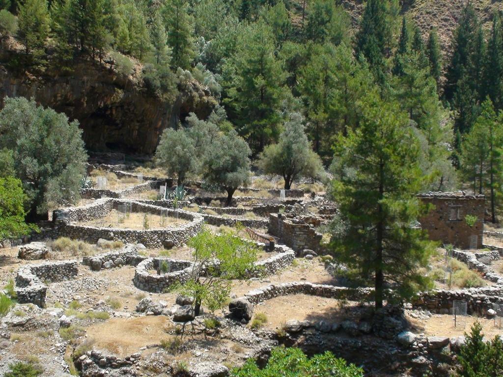 Old village of Samaria
