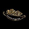 feast logo (1).png