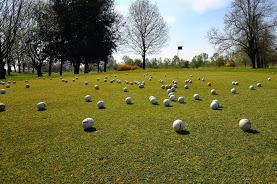 Golf Club Argenta 4