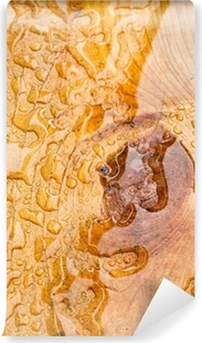 duvar-resimleri-islak-odun-tahta