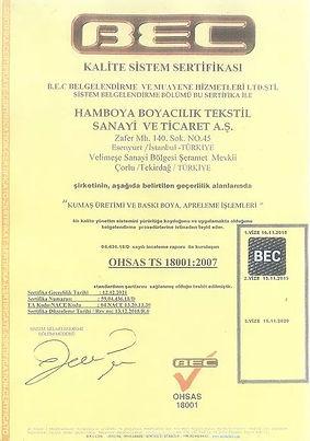 ohsasts180012007.JPG