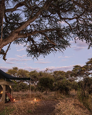 BarclayStennerSafaris+Accommodation+Tent