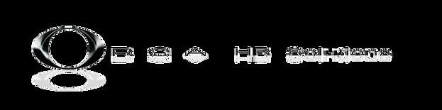 Orca-HR-Solutions logo