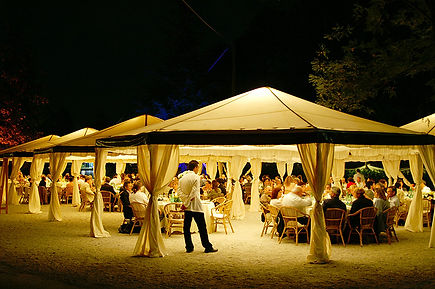 Luxurious Evening Party