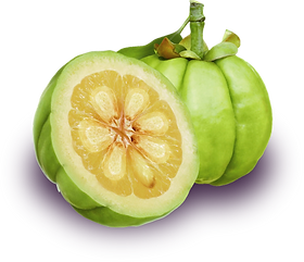 kisspng-garcinia-cambogia-dietary-supple