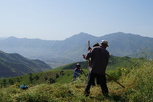 Tours around dushanbe