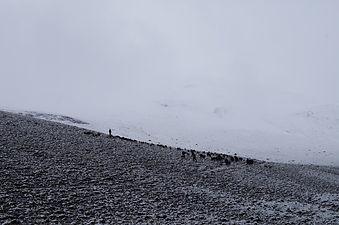 winter of Pamir