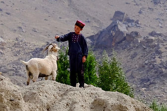 kid with a goat