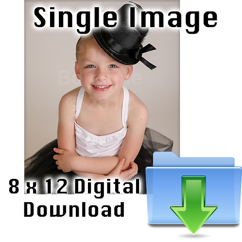 Single 8 x 12 Digital Download