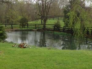 My Whiffletree Farm Tour