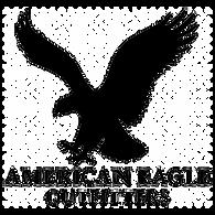 AmericanEagleOutfittersLogo.png